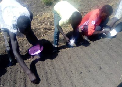 Orphans Planting Crops to reduce food uncertainty